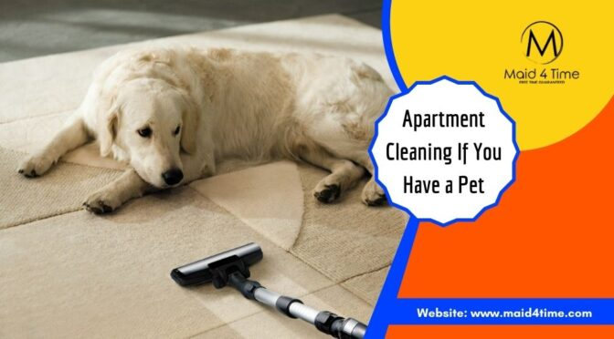 6 Ways to Keep Your Apartment Clean If You Have a Pet